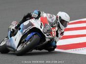 Endurance d'Or 2013