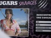 France Cougar Sauvage escroquerie