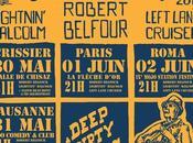Interview Vincent Delsupexhe, co-créateur Blues Rules