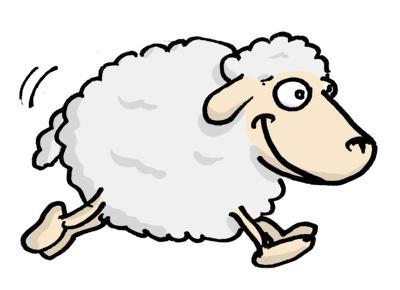 Sauvetage anecdotique de moutons au cours d'une mini-croisière sur le canal du Rhône à Sète