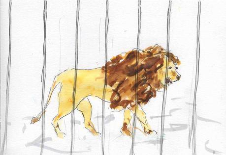 126) tourner lion en cage