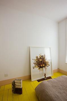 Color Crush   Du soleil dans nos intérieurs... sur www.decocrush.fr