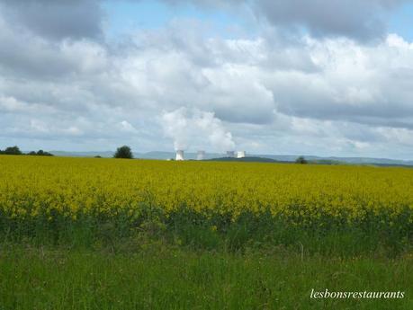 SIERCK-LES-BAINS(57)-Marche Gourmande-La Plaine Mosellane