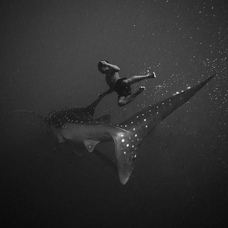 Les fonds marins en noir et blanc de Hengki Koentjoro - Photographie