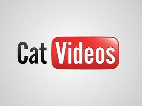 cat-video-youtube-logo1