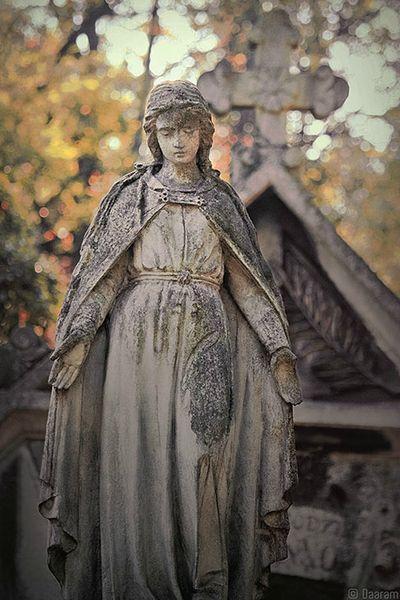 Angel-of-Krakow_3_Daaram