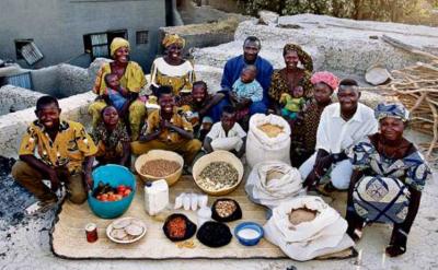 afrique,céréales,alimentation,mil,riz,cuisine