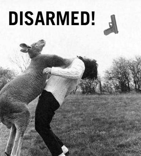 kangaroo-punch-glock-disarmed