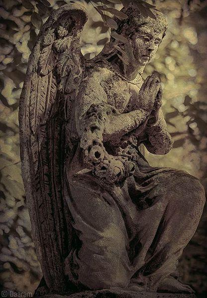 AngelsOfKrakow_4_Daaram
