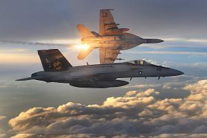 avion militaire f-18 armée canadienne pageant aérien bagotville