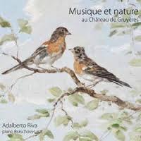 oiseau_blog1