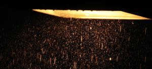 Connue sous le nom de lampe herbe, les ampoules  HPS sont des gouffres en énergie