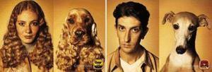 Maîtres et chiens