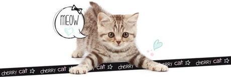 Cherry Cat, le temple des chats mignons !