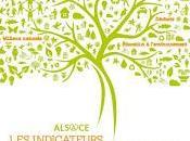 Indicateurs Environnement Alsace 2013