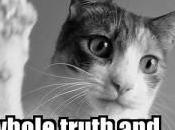 inquiétants mensonges Fleur Pellerin sujet PRISM