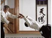 Tamaki lance livre hors norme dans monde budo. faut soutenir pour qu'il puisse sortir...