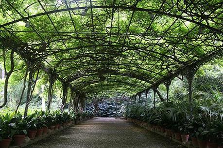 Jardin botanique la concepci n de malaga paperblog for Jardin de la conception malaga