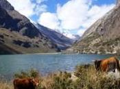 Région Huaraz: trek Santa Cruz