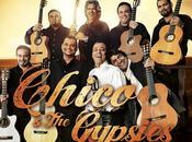 """Chico Gypsies Découvrez leur nouveau clip """"Amor Amores"""""""