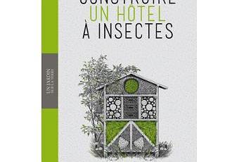 construire un h tel insectes wolf richard g nzel lire. Black Bedroom Furniture Sets. Home Design Ideas