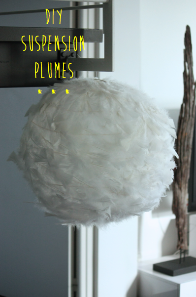 Diy suspension plumes paperblog - Suspension plume blanche ...