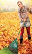 le ramassage des feuilles mortes n est plus une corv e paperblog. Black Bedroom Furniture Sets. Home Design Ideas