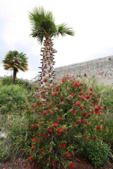 Decoration jardin quimper meilleures id es cr atives for Jardin quimper