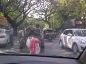 Pourquoi Inde c'est jungle routes
