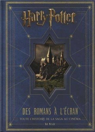 Id e cadeau fan de harry potter des romans l 39 cran toute l 39 histo - Idee cadeau harry potter ...