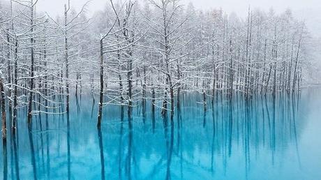 L'étang bleu [PV: Fubuki Shirou] Etang-bleu-dhokkaido-japon-L-8zkPcg