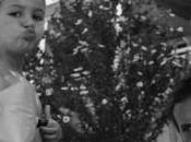 pauses photographiques présentent photographie famille