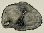Woodcut