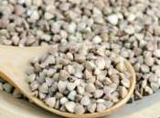 sarrasin: nutritif antioxydant, allié pour passer l'hiver