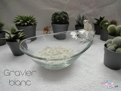diy planter des cactus et des succulentes voir. Black Bedroom Furniture Sets. Home Design Ideas