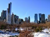 York City, entre Neige Polar Vortex