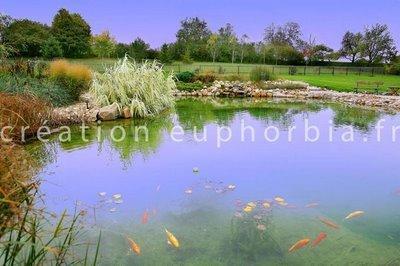 Les piscines cologiques lire for Construction piscine biologique