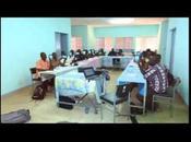 Utiliser pour renforcement institutionnel organisations producteurs agricoles