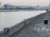 Budapest. L'île Marguerite hiver, l'endroit fait d'aller courir.