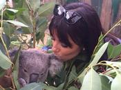 Longoria embrasse Koalas Australie