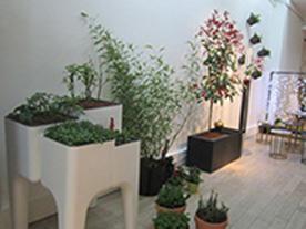 Un nouveau site pour cr er un jardin am nag sur votre - Amenager une terrasse en ville ...