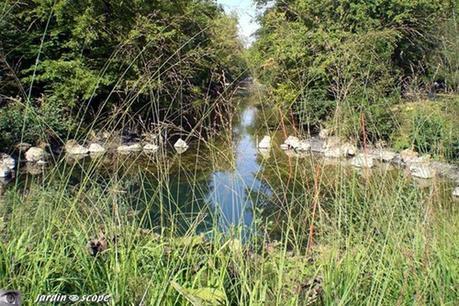La Source du Loiret alias le Bouillon