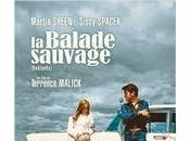 balade sauvage (Badlands)