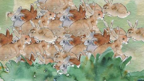 351) se reproduire comme lapins