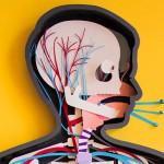 Le making of de «Human Body» par Kelli Anderson
