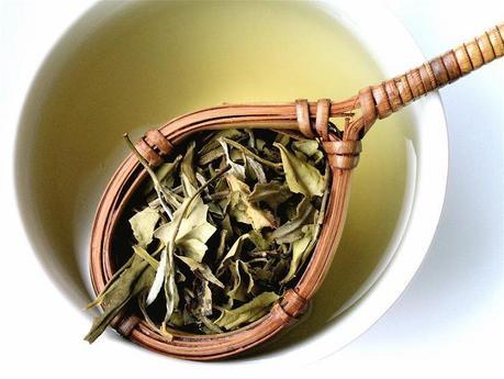 Bienfaits du thé (© Bienfaits du thé)