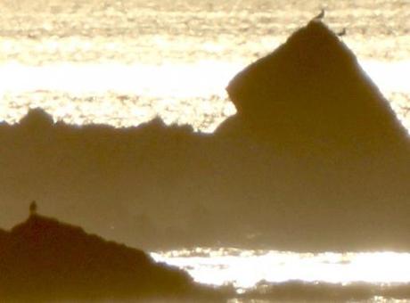 Le Groenland retrouvé d'Isaac de Lapeyrère