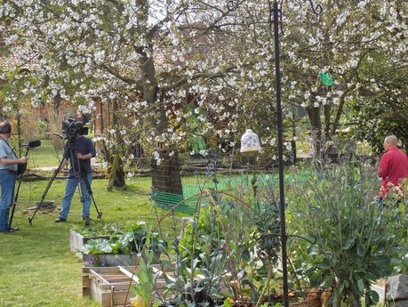 France Télévisions est venu filmer mon jardin !