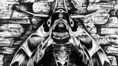 Paul-Roustan-Pandora-Sphinx2
