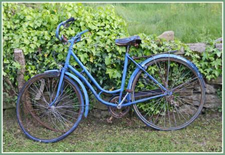 la-bicyclette-bleue-1345323328-1334974.jpg